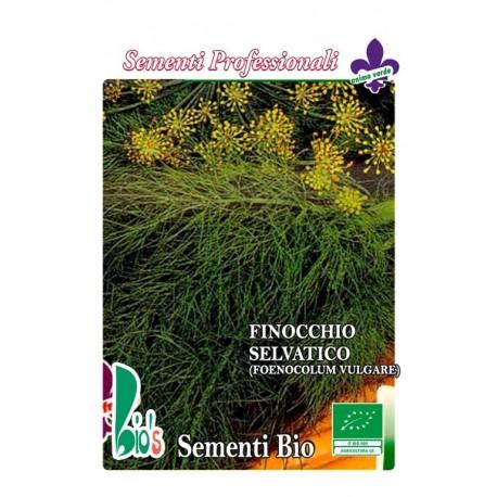 hinojo silvestre - semillas ecologicas