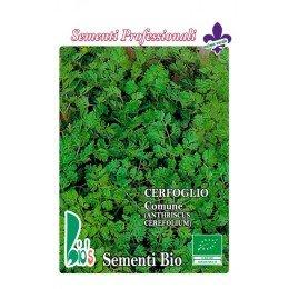 perifollo común (anthriscus cerefolium) - semillas ecológicas