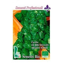 coles de bruselas - semillas ecológicas