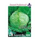 repollo aubervilliers - semillas ecológicas