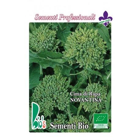 semillas ecológicas de brocoli rapa