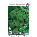 brocoli rapa de Lecce 90º - semillas ecológicas