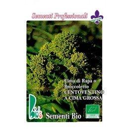 brocoli rapa centoventino - semillas ecologicas