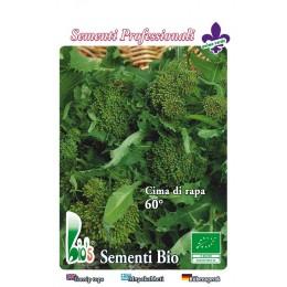 brocoli rapa sessantino - semillas ecológicas