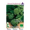 brocoli rapa de Lecce 60 dias - semillas ecologicas