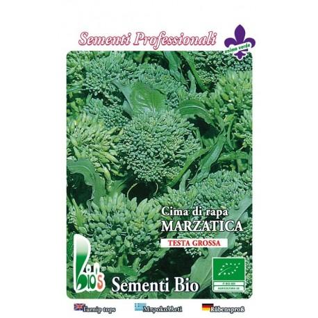 brocoli rapa marzatica - grelos - semillas ecológicas