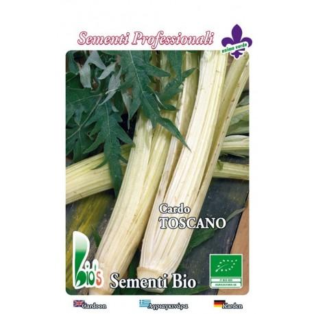cardo blanco gigante de la Toscana - semillas ecológicas