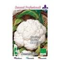 coliflor precoz bola de nieve - semillas ecologicas