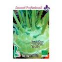 colinabo blanco de Viena - semillas ecologicas
