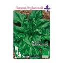 espinaca mostruosa de viroflay - semillas ecológicas