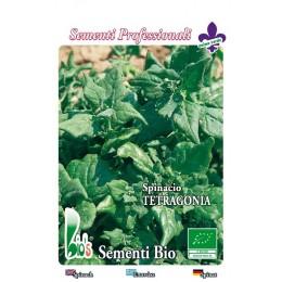 espinaca tetragonia - semillas ecológicas