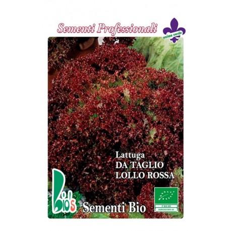 lechuga lollo rossa semillas ecológicas