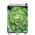 lechuga reina del hielo semillas ecológicas