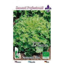 lechuga salad bolw - semillas ecológicas