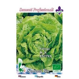 lechuga kagran de verano - semillas ecológicas