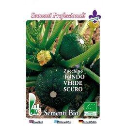 calabacin redondo de Piacenza - semillas ecologicas