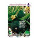 calabacin redondo de piacenza - semillas ecologicas - www.planetasemilla.es