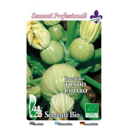 calabacin redondo de Niza - semillas ecologicas