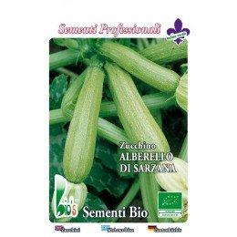 calabacin alberello de Sarzana - semillas ecológicas