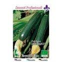 calabacin diamante - semillas ecológicas