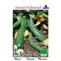 calabacin San Pasquale - semillas ecológicas - www.planetasemilla.es