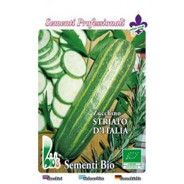 calabacin estriado de Italia - semillas ecologicas