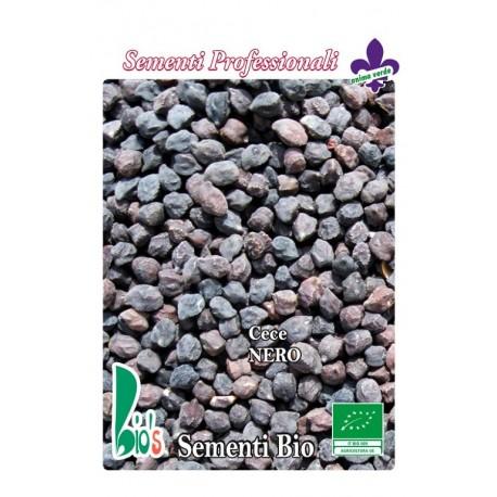 semillas ecológicas de garbanzo negro