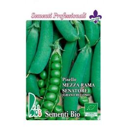guisante senador - semillas ecológicas