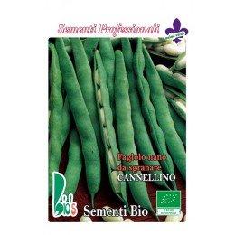judia cannellino lingot - semillas ecologicas - www.planetasemilla.es