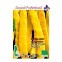 semillas ecologicas de judia amarilla plana - www.planetasemilla.es
