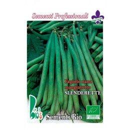 judia slenderette - semillas ecológicas