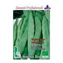 judia baroma (marconi grano blanco) - semillas ecologicas
