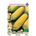 maíz para palomitas (semillas ecologicas)