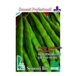 judia marconi grano negro enrame - semillas ecológicas