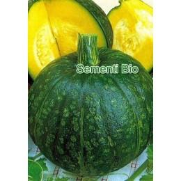 calabaza delica (semillas ecológicas)