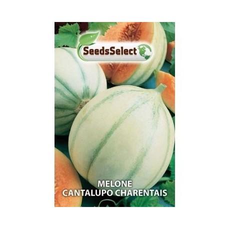melon cantalupo charentais