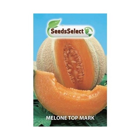 melon top mark - semillas certificadas