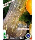 calabaza nostrale (semillas ecológicas)