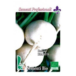 rábano blanco redondo de Milán (semillas ecológicas)