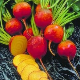 remolacha golden (semillas ecológicas)