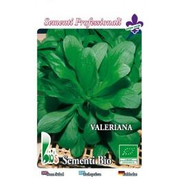 canonigos - valeriana holandesa (semillas ecologicas)