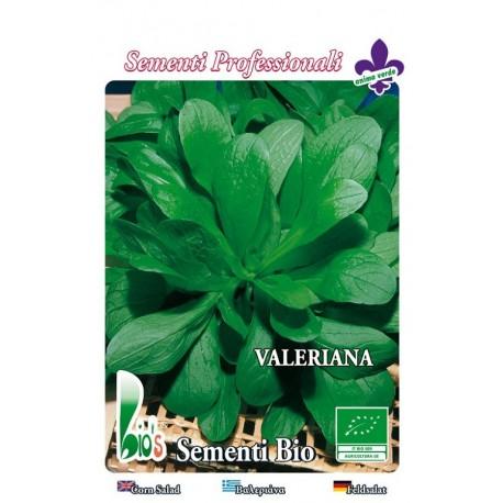 semillas de valeriana ecologicas