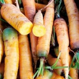 "zanahoria amarilla ""jaune du doubs"" (semillas ecológicas)"