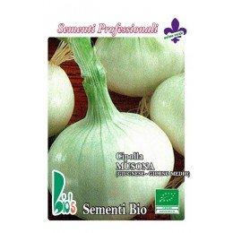cebolla blanca musona de junio (semillas ecológicas)