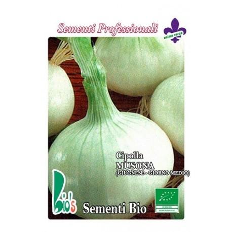 semillas ecológicas de cebolla blanca musona de junio