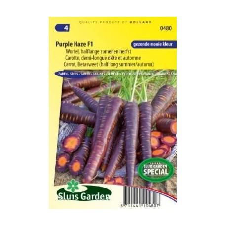 zanahoria neblina purpura F1