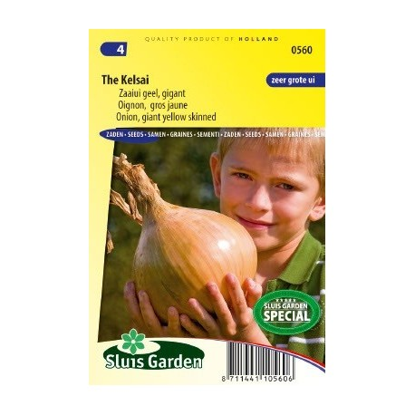 cebolla gigante The kelsai - semillas