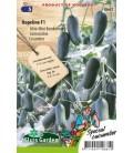 pepino snack hopeline f1 - semillas