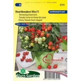tomate Heartbreaker Vita F1