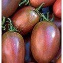 tomate purpura ucrania